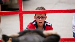 Vaquillas en Quinto de Ebro esta mañana