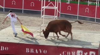 Vibrante desafío taurino en La Puebla de Alfindén