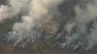 Alerta mundial por los incendios en la selva amazónica