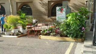 Los jardines le ganan espacio a los aparcamientos en el 'Parking Day' en Zaragoza