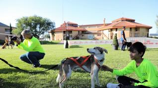 Participantes en el V Envento Canino celebrado en Brotalia