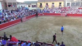 Un vecino de Mallén en la UCI tras saltar un toro al callejón en Cortes de Navarra