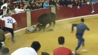 Saltos, revolcones y vacas accidentadas en la sexta mañana de vaquillas en Zaragoza