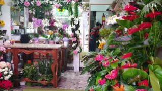 Octubre en Zaragoza… el mes de la flores