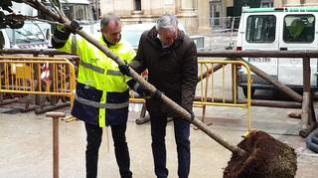 El alcalde de Zaragoza, Jorge Azcón, planta 'Un Árbol por Europa'