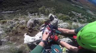 La Guardia Civil rescata a cuatro perros enriscados en Bierge y a uno en La Fueva