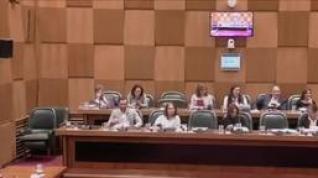 La izquierda abandona el salón de plenos tras un bronco debate sobre la línea 2 del tranvía