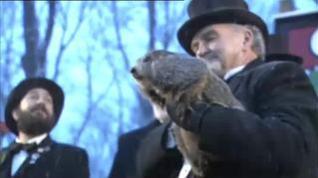 La primavera llegará pronto, según la marmota Phil