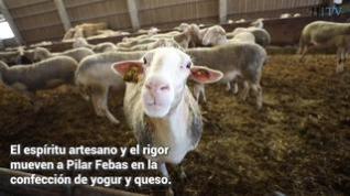El yogur de Fonz que hace la Val de Cinca causa sensación en Aragón