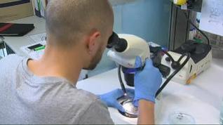 """Estos son los tratamientos que se revelan """"eficaces"""" contra el coronavirus"""