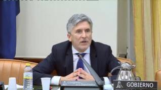 """Grande-Marlaska insiste en que la monitorización de las redes """"no tiene finalidad política"""""""