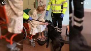 Soledad y su perro guía se reencuentran en el hospital Miguel Servet