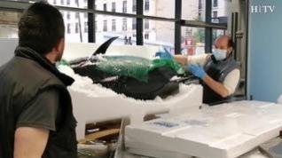Un atún de 285 kilos recala en el Mercado Central de Zaragoza