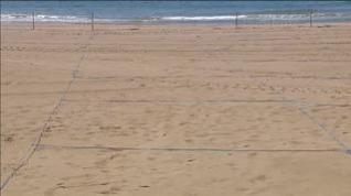 Así dividirán su espacio las playas este verano