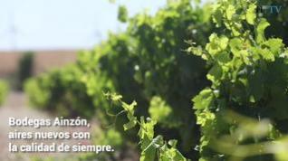 Vídeo de Ainzón