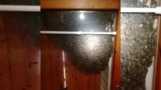 Un enjambre de abejas encontrado en una casa en Lagueruela