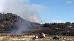 El fuerte viento complica la extinción de un incendio forestal declarado en Sádaba
