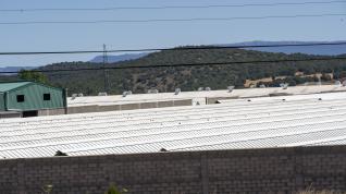 Granja de visones en la Puebla de Valverde, a la que la DGA ha ordenado sacrificar a mas de 90.000 ejemplares