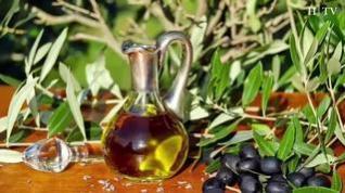 Mitos alimenticios: ¿Es mejor freír con aceite de girasol o de oliva?
