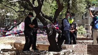 Rivarés se encadena a un olivo para denunciar la tala de la plaza de Salamero