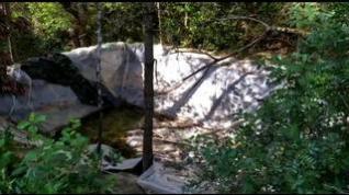 Un campamento de marihuana a las puertas del Pirineo