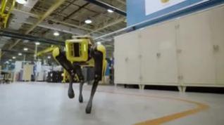 Así es 'Fluffy', el nuevo perro robot de Ford