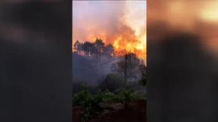 El incendio se originó en la tarde de este viernes en el municipio de Garafía