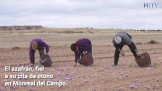 Sabores de lujo en Monreal del Campo