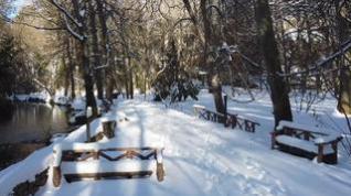 Paisaje de cuento en el Monasterio de Piedra nevado