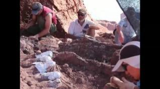 Desentierran en Argentina los restos  del que podría ser el dinosaurio más grande del planeta
