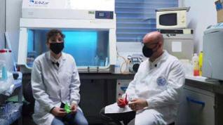 Un grupo de investigadores lanza el reto 1.000 grullas de papel contra el cáncer