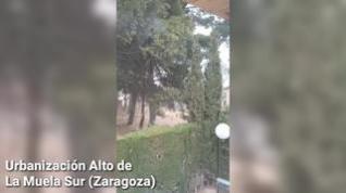 """Vecinos de la urbanización Alto de La Muela, en Zaragoza: """"Tenemos un tendido eléctrico tercermundista"""""""