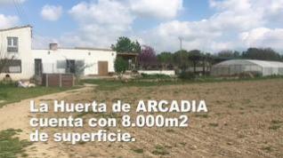 Huerta Arcadia