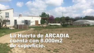 Huerta Arcadia de la Fundación Agustín Serrate