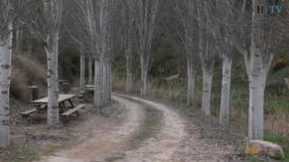 Vídeo de la ruta del río Guadalopillo