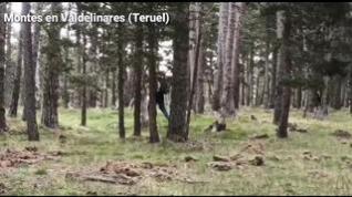 Medio centenar de personas buscan a un hostelero de Zaragoza desaparecido cuando buscaba setas en Valdelinares