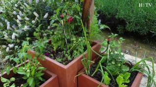 Cómo convertir una terraza en un huerto