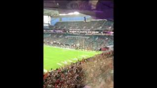 Salvan a un gato en un estadio de Florida utilizando una bandera para amortiguar la caída