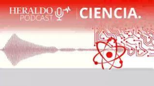 Podcast Heraldo   Materiales biodegradables, ¿hasta qué punto?