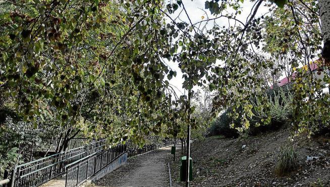 El andador junto al Huerva está ahora completamente separado del parque Bruil.