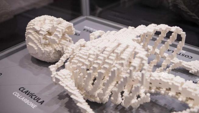 Esqueleto humano en lego.