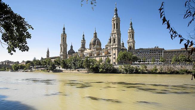 Algunas algas en el Ebro son visibles estos días a la altura de la arboleda de Macanaz.