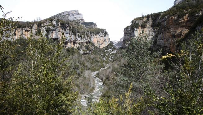 Una vista del cañón de Añisclo.