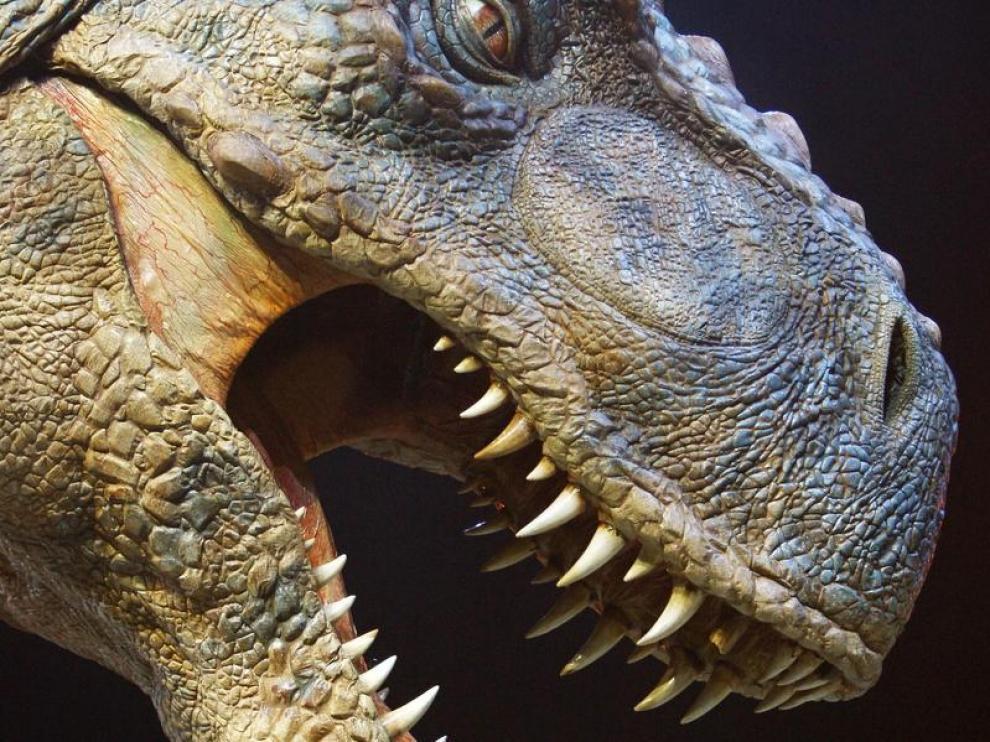 Simulador de un tiranosaurio rex