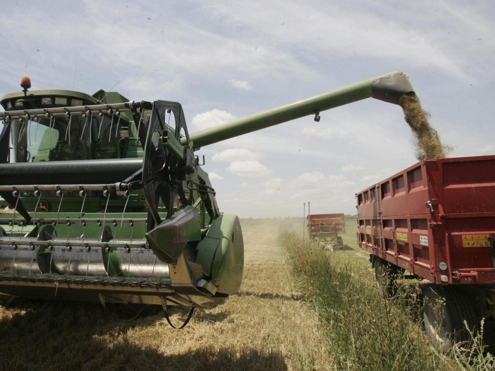 Cosecha de trigo en una explotación de la provincia de Huesca