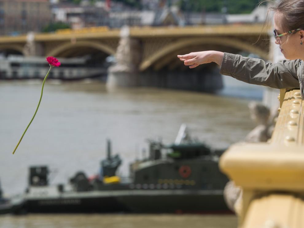 Una mujer arroja una flor al Danubio en memoria de las víctimas.
