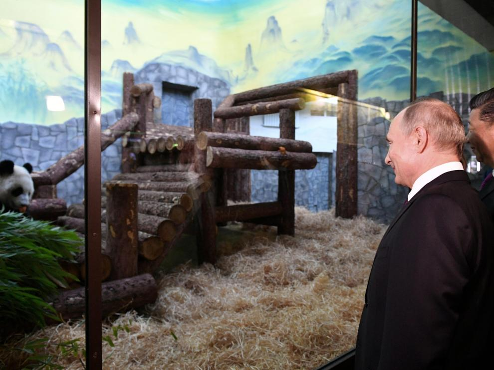 Russian President Vladimir Putin and Chinese President Xi Jinping visit the Moscow Zoo, which received a pair of giant pandas from China, in Moscow, Russia June 5, 2019. Sputnik/Alexander Vilf/Kremlin via REUTERS ATTENTION EDITORS - THIS IMAGE WAS PROVIDED BY A THIRD PARTY. [[[REUTERS VOCENTO]]] RUSSIA-CHINA/XI-PUTIN-ZOO
