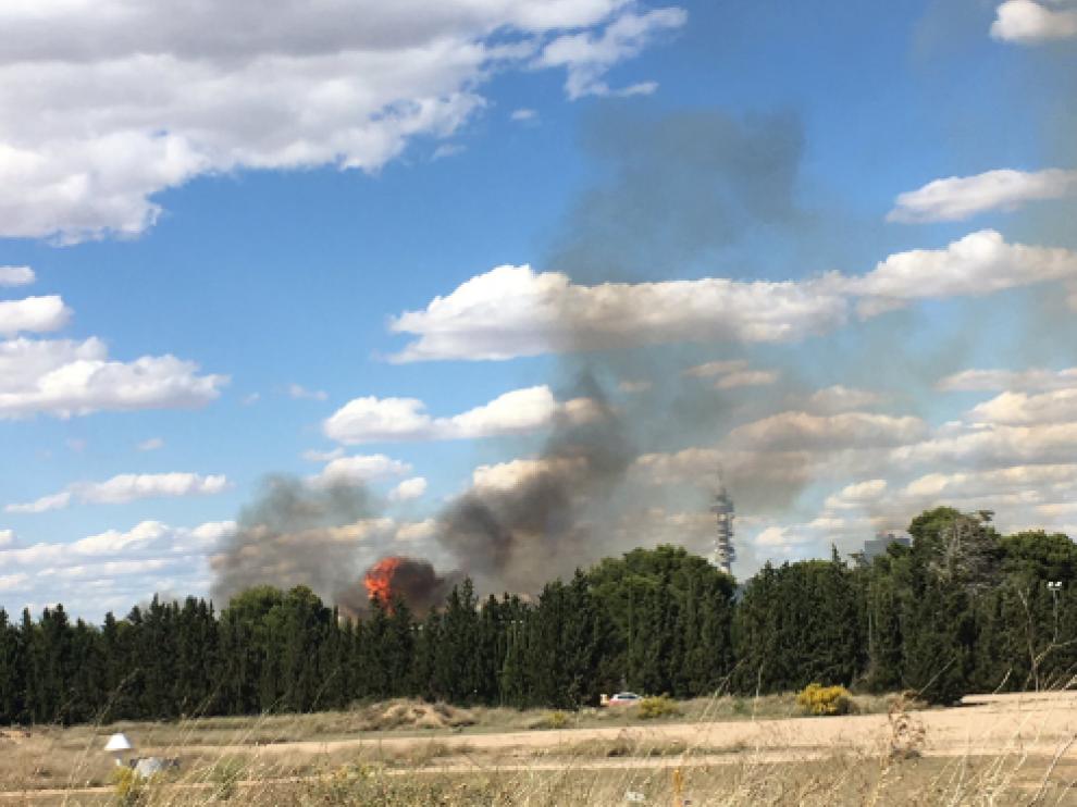 El incendio se ha producido este viernes a media tarde.