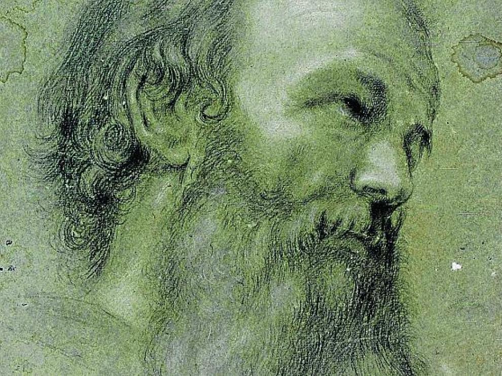 'Cabeza masculina' atribuida a Bayeu.