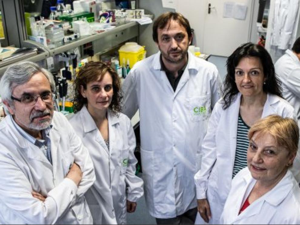 Los investigadores aragoneses han hallado un nuevo método